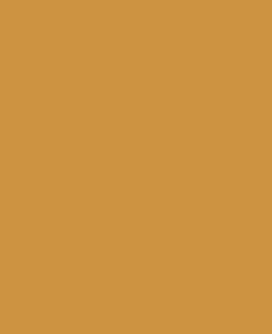 On The Slow Lane